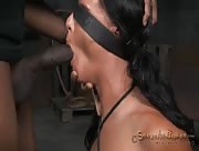 Thin flexible slut put through her paces with big dick and bo